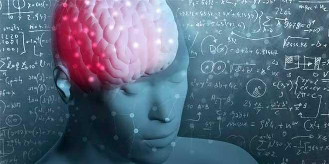 Bacopa Monnieri y Función Cognitiva