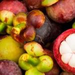 Beneficios del Mangostán