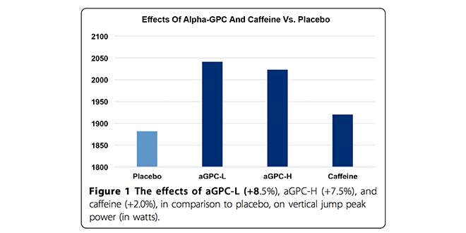 effects-of-alpha-gpc