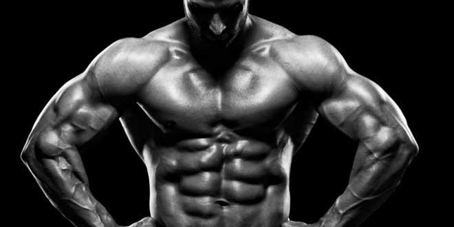 testofen-masa-muscular
