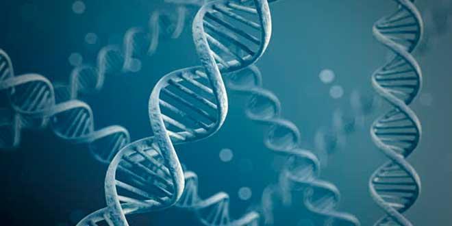 Clasificación de proteínas