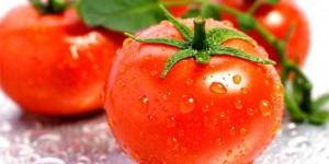 Licopeno como antioxidante