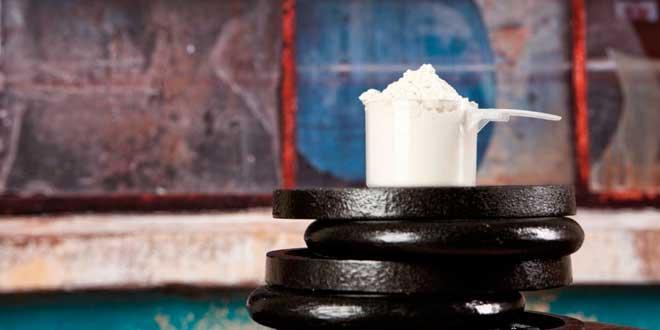 La mejor proteína para tomar durante el entrenamiento