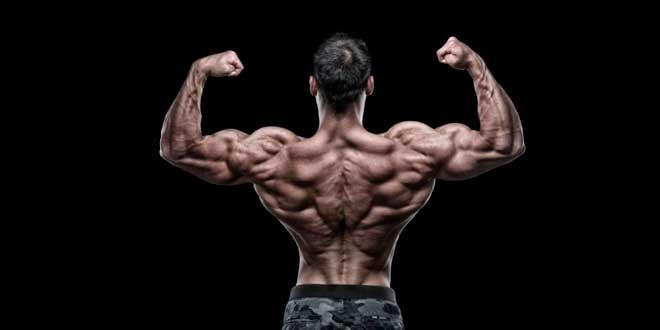 Suplementos potenciadores de la hormona del crecimiento (HGH)