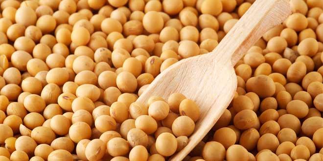 legumbres-soja