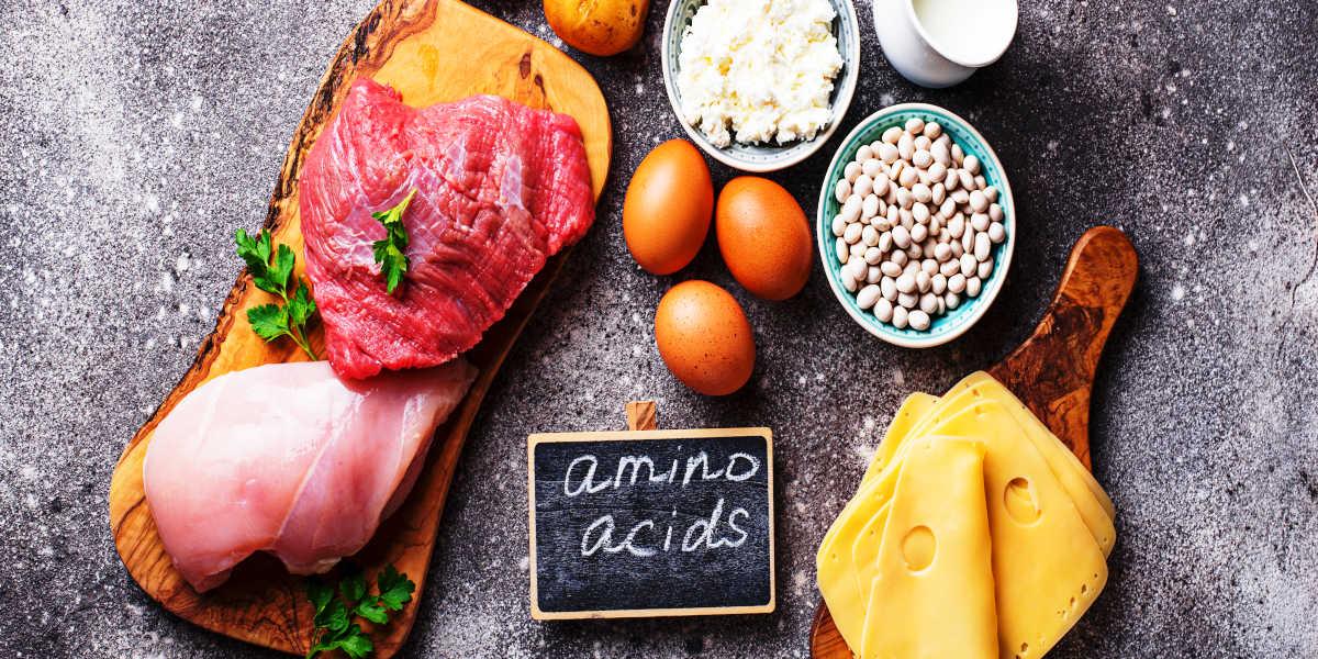 ¿Cuántos tipos de aminoácidos existen?