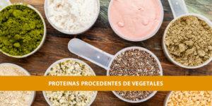 proteínas vegetarianos