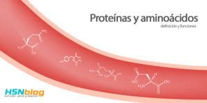 proteínas y aminoácidos