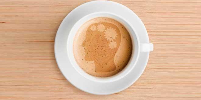 Cerebro y Cafeína