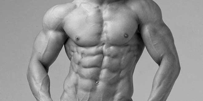 Zinc et fonction hormonale