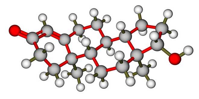 estructura-molecular-testosterona