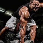 Máxima ganancia muscular