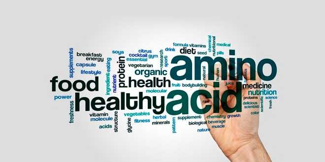 Aminoácido e vida