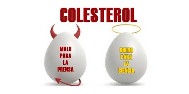 ¿Es el colesterol el gran enemigo que dicen?