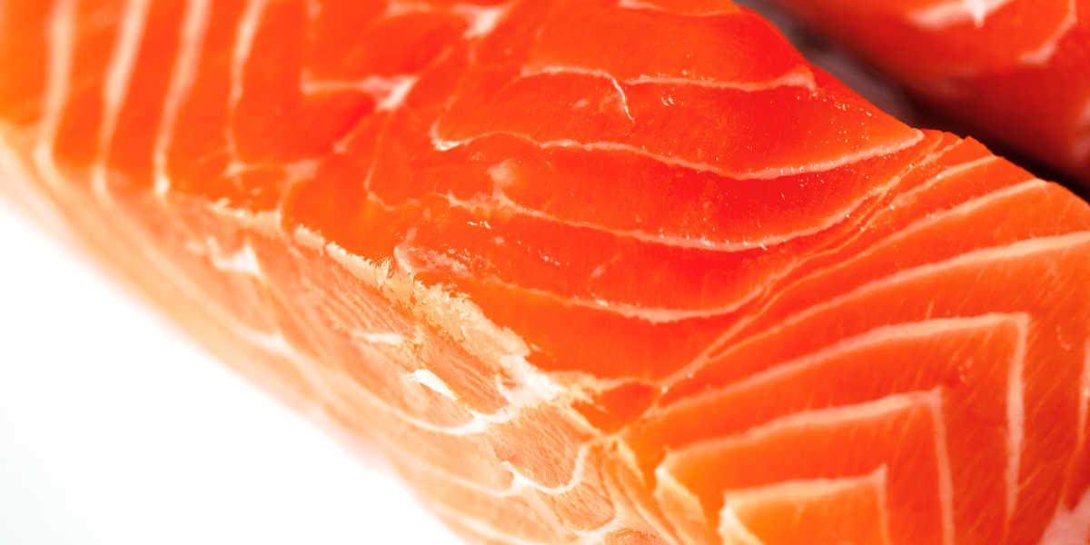 ¿Qué cantidad de proteína animal aporta el salmón?