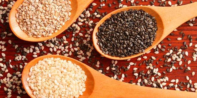 Semillas y Proteínas