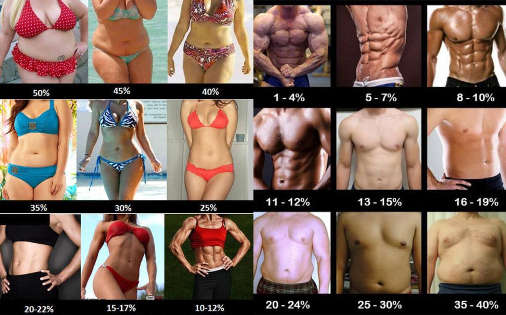 22 grasa corporal mujer
