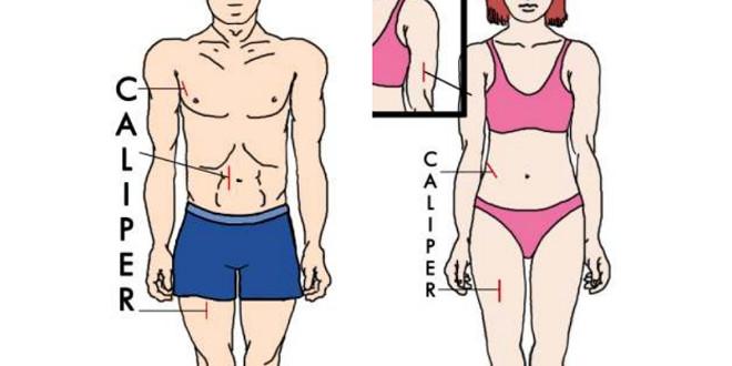 como sacar el indice de grasa corporal formula