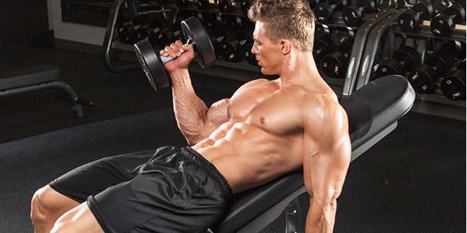 ¿Cómo crear tu propia Rutina de Entrenamiento Full Body?