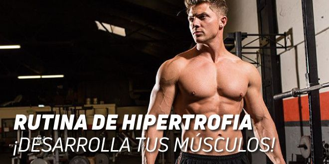Rutina de Hipertrofia: Desarrolla tus Músculos