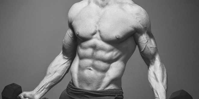 Bcaa e Perda de gordura