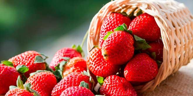 Fresas y Vitamina C