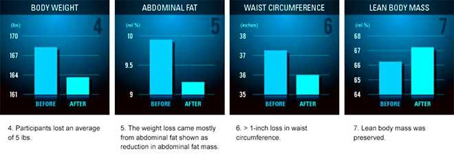 Etapa II de Dieta FMD