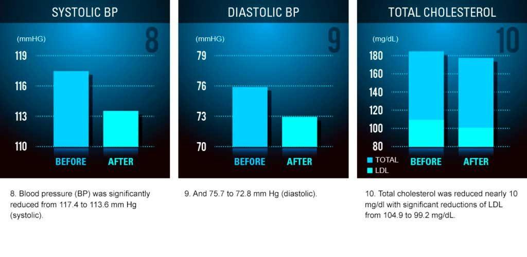 Etapa III de Dieta FMD