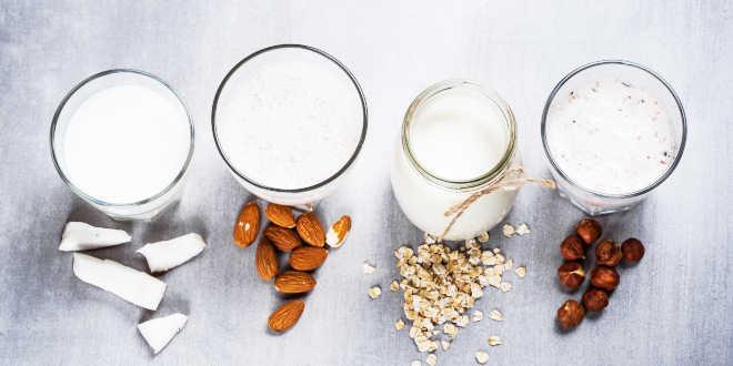 Qué productos lácteos alternativos existen