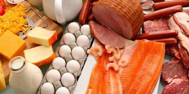 ¿Cuál es el Alimento que tiene más Proteína?