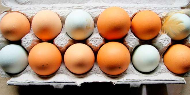 Huevos Ricos en Vitaminas y Minerales