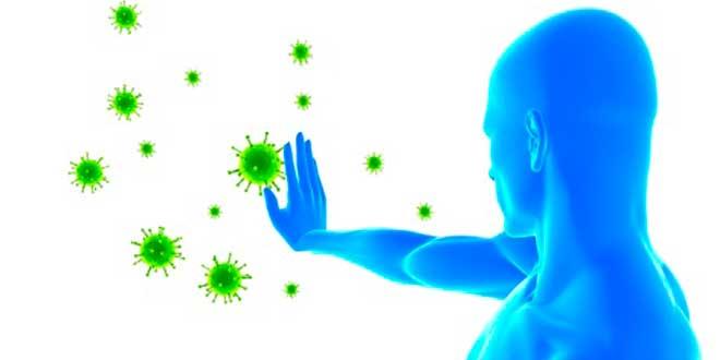 El Calostro ejerce propiedades antimicrobiales y antibacterianas para proteger el organismo frente amenazas externas