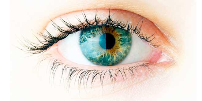 Omega 3 ye saúde ocular