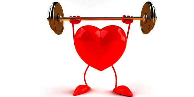 Omega 3 y salud cardiovascular