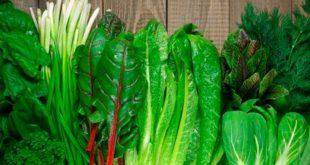 Alimentos Ácido Fólico