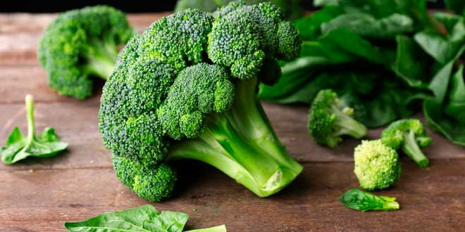 Brócoli y Fibra