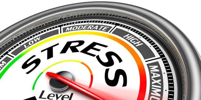 Fatiga Adrenal y Estrés
