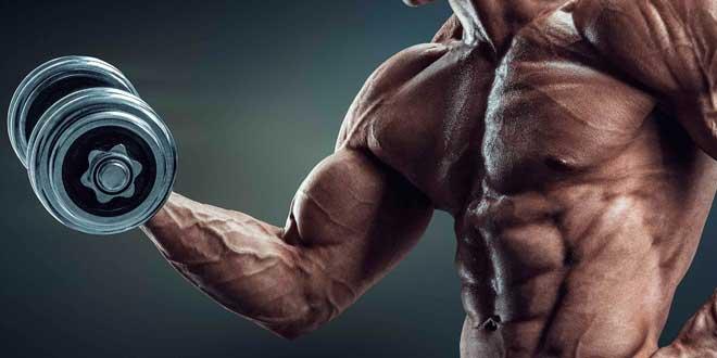 Entrenar Bíceps y Tríceps