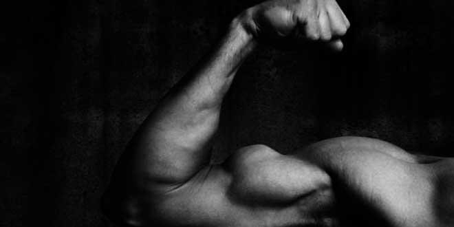 Desarrollo Muscular y Creatina