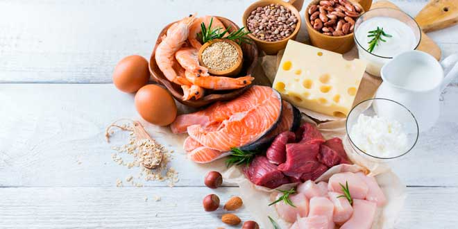 What are Proteins?