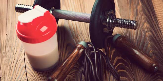 Protein Shakes for everyone