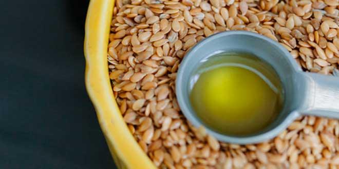 Aceite de Lino para Veganos