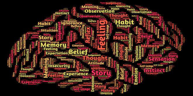 Colina, cerebro y memoria