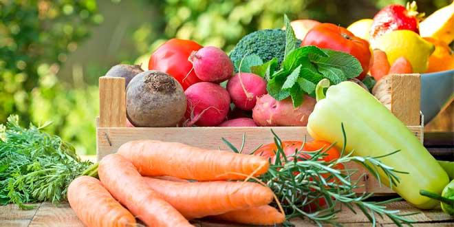 Come Más Verduras: Beneficios para la Salud, Consejos para Aumentar su Consumo