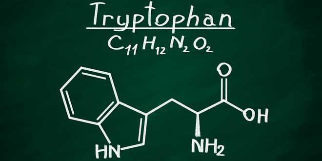 Triptófano – ¡Todo lo que debes saber!