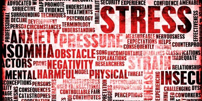 Estrés y Cambios en el cuerpo