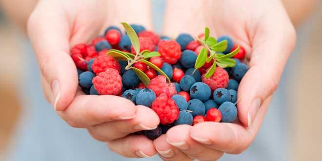Mejores Antioxidantes