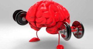 Top Suplementos Salud del Cerebro