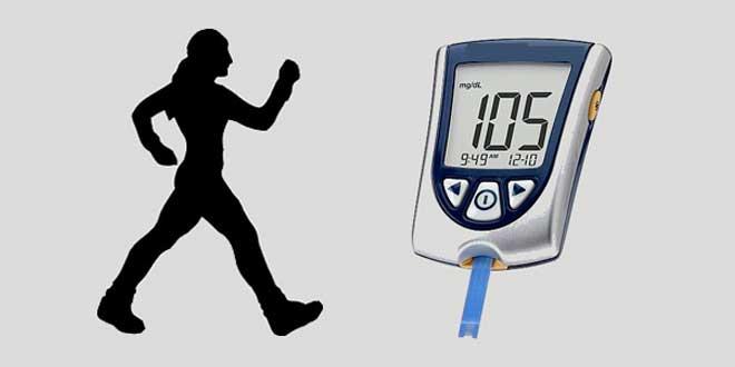 Créatine pour améliorer le diabète