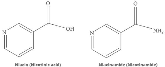 Niacina y Nicotanamida